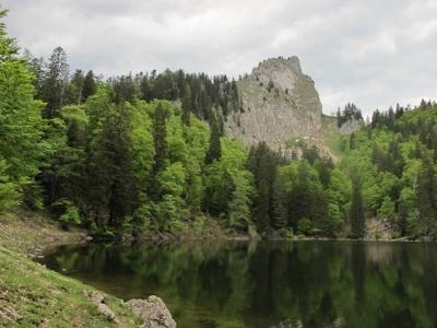 Foto: Karl Hoffmann / Wander Tour / Von St. Wolfgang auf den Vormauerstein / Der Mönichsee (1.300 m) mit dem Törlspitz (1.589 m)  / 11.06.2013 12:58:43