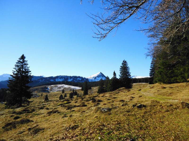 Foto: Günter Siegl / Wander Tour / Von der Postalm auf den Labenberg / Der formschöne Labenberg wartet bereits auf Besuch!  / 28.12.2015 19:38:14