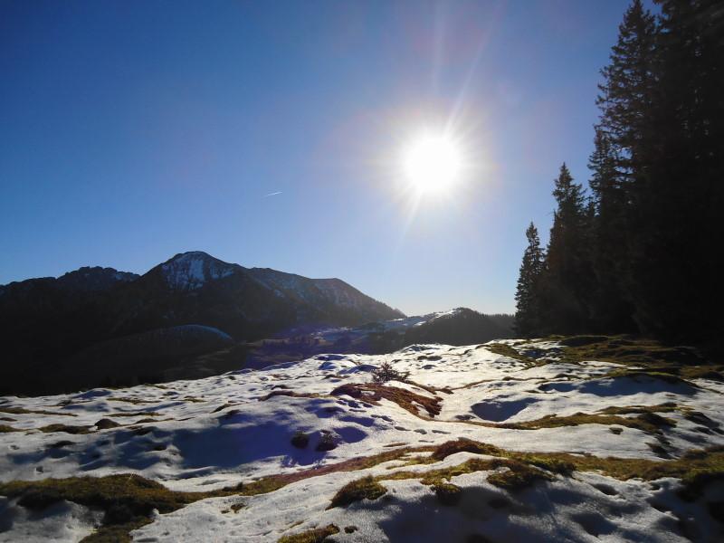 Foto: Günter Siegl / Wander Tour / Von der Postalm auf den Labenberg / Die Piste wartet auf frivole Schwinger! / 28.12.2015 19:36:21