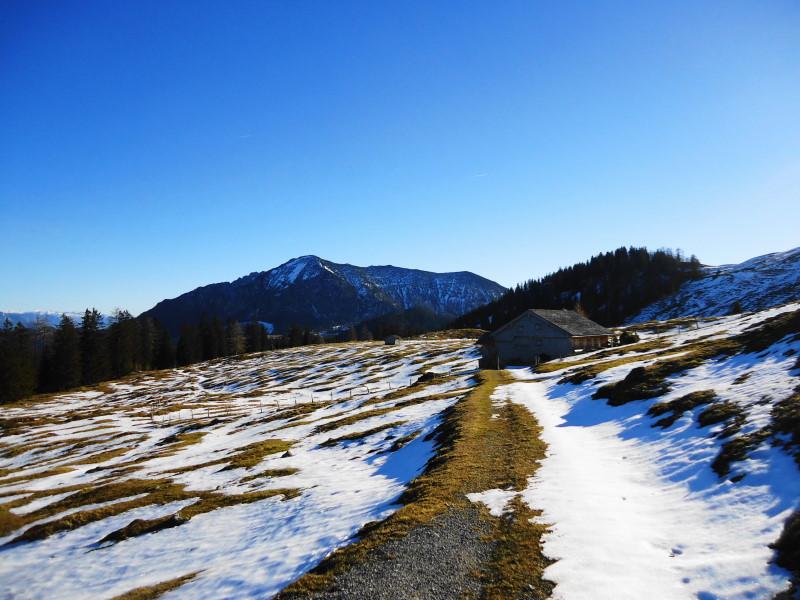 Foto: Günter Siegl / Wander Tour / Von der Postalm auf den Labenberg / Braunedlgkogel / 28.12.2015 19:34:06