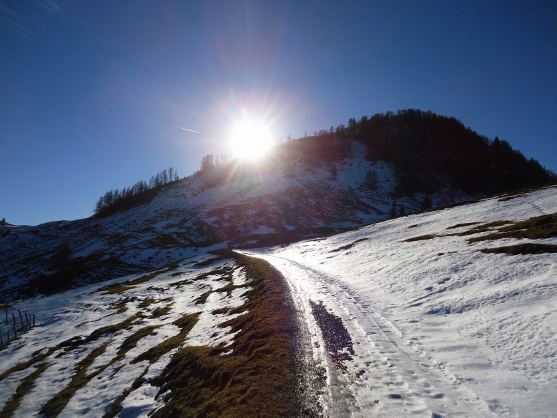 Foto: Günter Siegl / Wander Tour / Von der Postalm auf den Labenberg / 28.12.2015 19:33:50