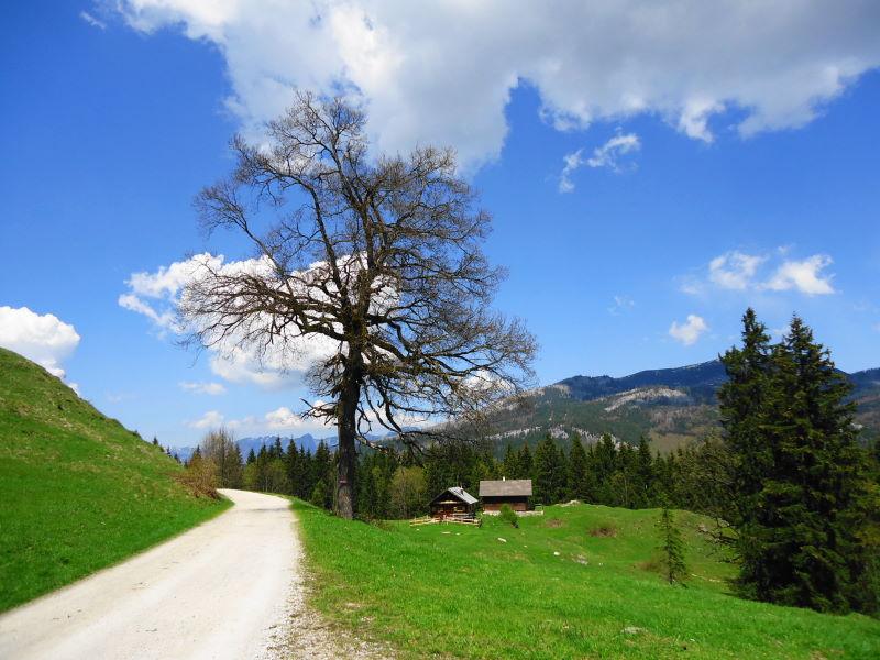 Foto: Günter Siegl / Wander Tour / Perneck - Kolowratshöhe / Gschwendtalm / 15.05.2016 20:15:53