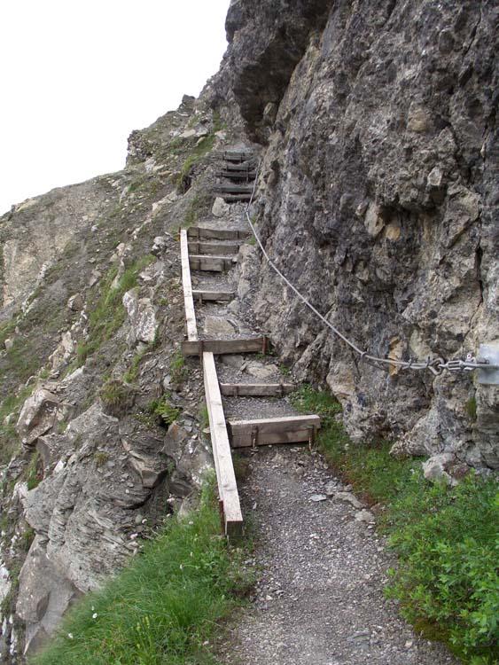 Foto: vince 51 / Wander Tour / Alpjoch - Pleiskopf - Muttekopf / auf dem Drischl-Steig / 14.07.2009 23:26:33