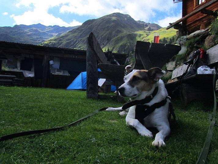 Foto: Andreas Koller / Wander Tour / Von der Volkzeiner Hütte auf die Hochalmspitze (2797m) / 23.04.2014 20:16:51