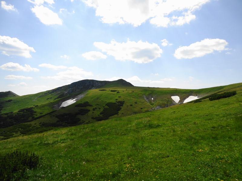 Foto: Günter Siegl / Wander Tour / Von Altenberg an der Rax auf die Schneealpe / Windberg voraus! / 17.07.2015 14:54:10