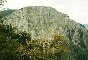 Foto: Wolfgang Dröthandl / Wander Tour / Von Altenberg an der Rax auf die Schneealpe / Abstieg vom Schneealpenhaus durch den Blarergraben, gegen Zäunlwände / 01.02.2011 13:06:43