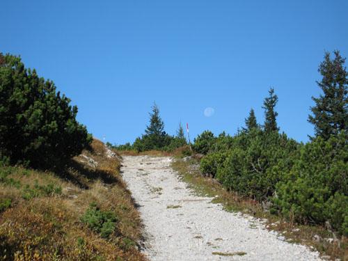 Foto: bestfriend / Wandertour / Große Rax-Runde über den Dreimarkstein und die Scheibwaldhöhe (1948m) / 04.10.2007 19:20:42