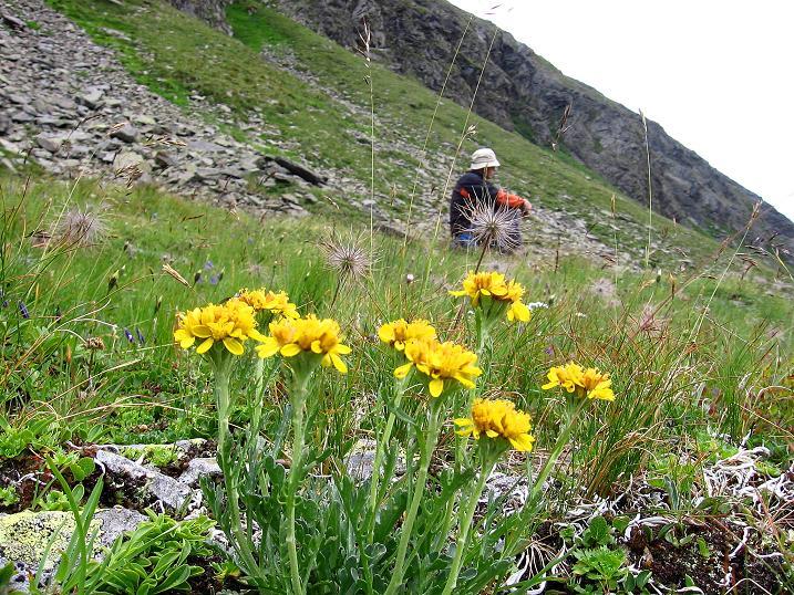 Foto: Andreas Koller / Wander Tour / Vom Prebersee auf das Roteck (2742 m) / Rast im Preberkessel / 16.08.2010 18:44:00