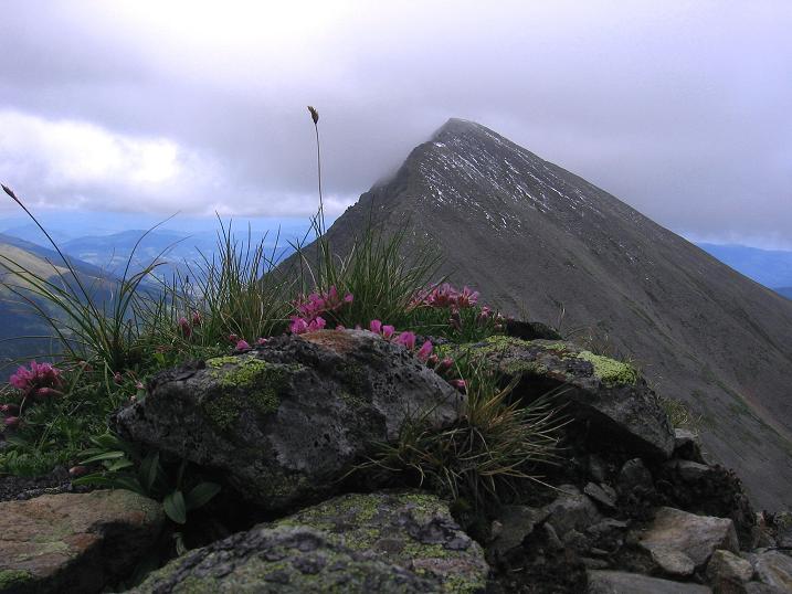 Foto: Andreas Koller / Wander Tour / Vom Prebersee auf das Roteck (2742 m) / Preber (2741m) / 16.08.2010 18:34:16