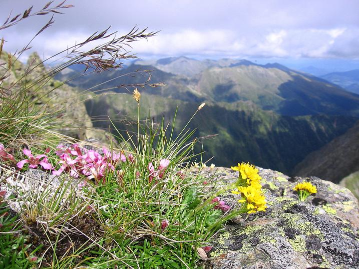 Foto: Andreas Koller / Wander Tour / Vom Prebersee auf das Roteck (2742 m) / 16.08.2010 18:29:02