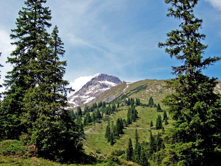 Foto: vince 51 / Wander Tour / Von Lech auf die Hochlichtspitze / Hochlichtspitze vomWeg zwischen Unter-und Ober-Älpele / 17.07.2009 23:42:28