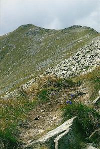 Foto: Wolfgang Dröthandl / Wandertour / Vom Etrachsee auf das Bauleiteck / Aufstieg zum Gipfelkamm / 01.02.2011 11:40:02