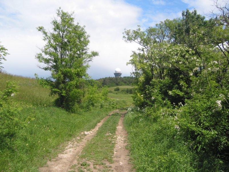 Foto: Landesbunny / Wander Tour / Wanderung im Naturpark Leiser Berge / Blick zurück auf den Buschberg mit der Radarkuppel, am Weg nach Oberleis. / 17.09.2007 11:19:44