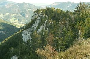 Foto: Wolfgang Dröthandl / Wander Tour / Dürre Wand - Überschreitung / Blick vom Plattenstein nach Nordosten / 31.01.2011 12:54:51
