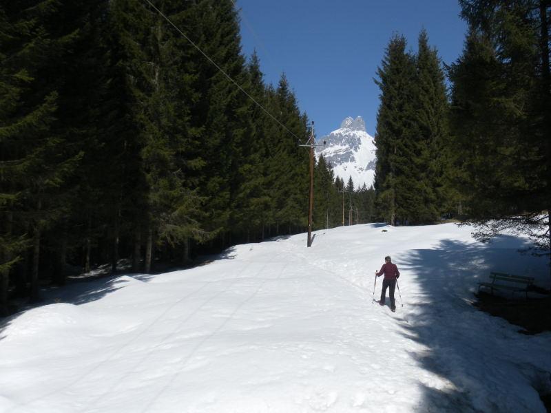 Foto: Wolfgang Lauschensky / Wander Tour / Hofalmwanderung - Filzmoos / am Naturlehrpfad Hofalm, Bischofsmütze / 22.03.2016 18:46:22
