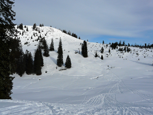 Foto: vince 51 / Wander Tour / Schneeschuhwanderung auf den Schönkahler / Hochtal Alter Hof mit Südhang des Pürschling / 24.12.2007 00:13:34