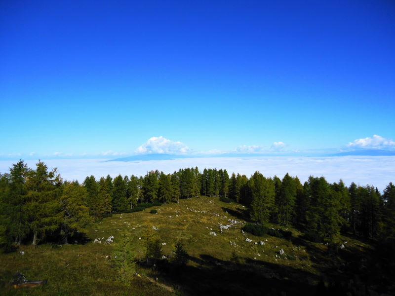 Foto: Günter Siegl / Wander Tour / Von Bleiburg auf die Hochpetzen (2114m) / 13.11.2016 18:57:18