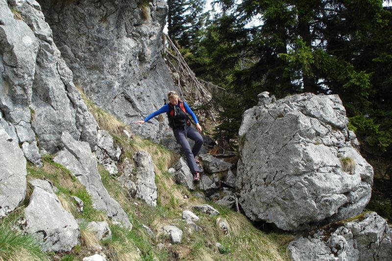 Foto: Günter Siegl / Wander Tour / Vom Traunsee auf den Hochkogel / 30.04.2011 21:41:59