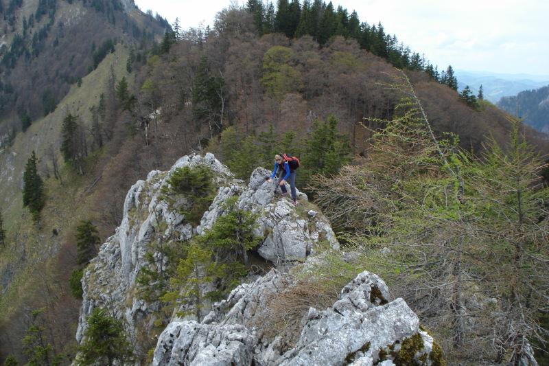 Foto: Günter Siegl / Wander Tour / Vom Traunsee auf den Hochkogel / Leichte Gratkletterei am Wandlkogel. / 30.04.2011 21:43:55