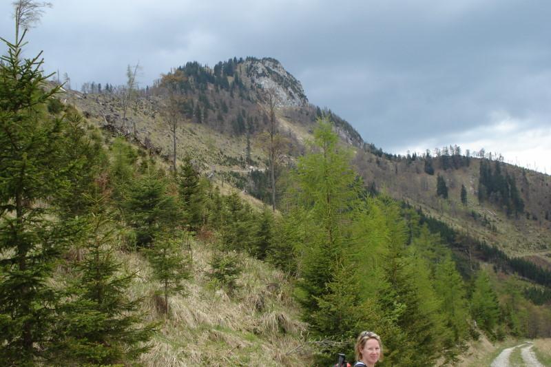 Foto: Günter Siegl / Wander Tour / Vom Traunsee auf den Hochkogel / Hochkogel / 30.04.2011 21:44:06