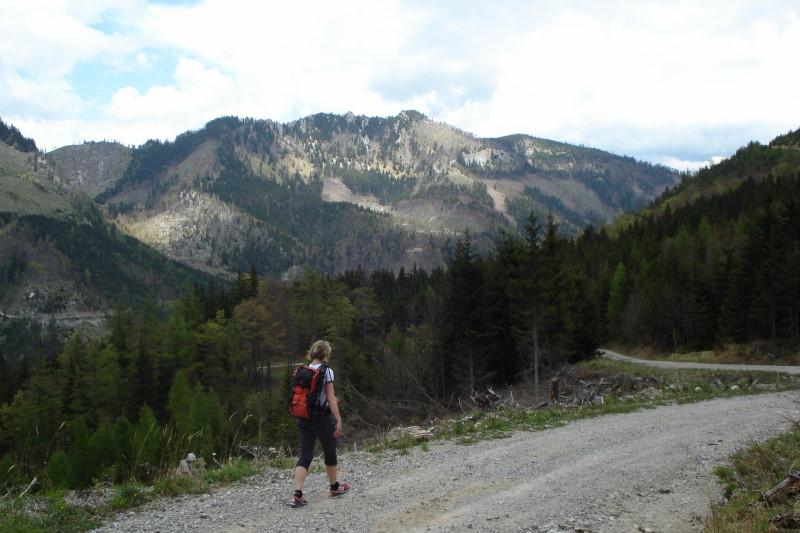 Foto: Günter Siegl / Wander Tour / Vom Traunsee auf den Hochkogel / Blick Richtung Steineck. / 30.04.2011 21:44:24