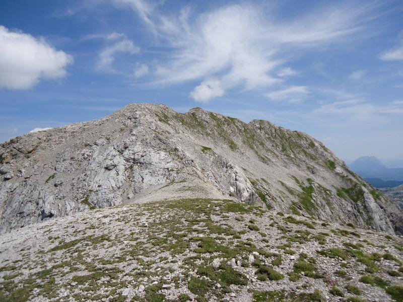 Foto: Günter Siegl / Wandertour / Durch das Edelgrieß auf den Landfriedstein / Gipfelaufbau Landfriedstein. / 08.07.2011 15:13:02