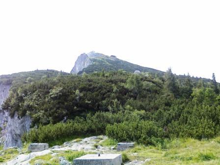 Foto: Karina Umdasch (Redaktion) / Wander Tour / Von Glanegg über den Dopplersteig zum Geiereck-Gipfel / Das letzte Stück zum Gipfel / 19.07.2011 17:47:16