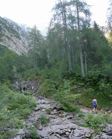 Foto: Wolfgang Lauschensky / Wander Tour / Über die Schwarzachenalm zum Sonntagshorn / im mittleren Kraxenbachtal / 15.07.2011 18:50:44