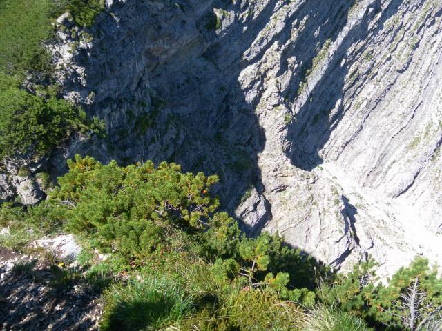 Foto: Wolfgang Lauschensky / Wander Tour / Über die Schwarzachenalm zum Sonntagshorn / Tiefblick von oberhalb des Ausstiegs (links) in das obere Felsband / 15.07.2011 18:49:31