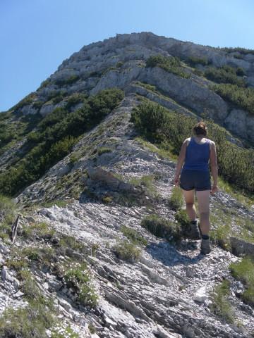 Foto: Wolfgang Lauschensky / Wander Tour / Über die Schwarzachenalm zum Sonntagshorn / nette Kraxeleien über kurze Felsstufen wechseln mit Gehgelände / 15.07.2011 18:49:04