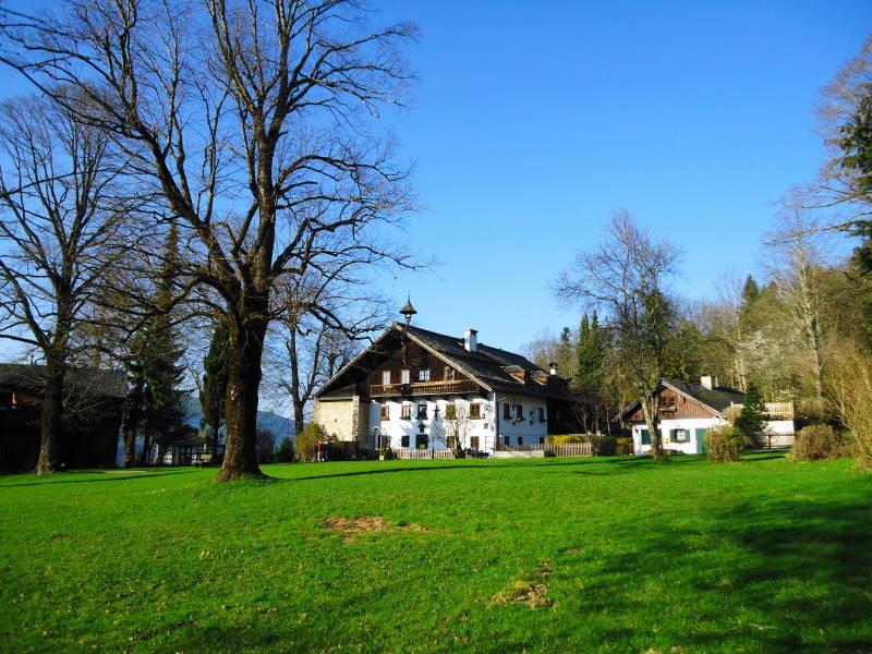 Foto: Günter Siegl / Wander Tour / Glasenbachklamm - Erentrudisalm / Erentrudisalm / 04.05.2017 20:28:28