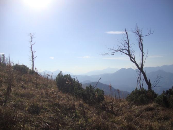 Foto: Wolfgang Dröthandl / Wander Tour / Über die Ennser Hütte auf den Almkogel / Erinnerung an Sturm Kyrill? / 16.10.2018 14:39:01