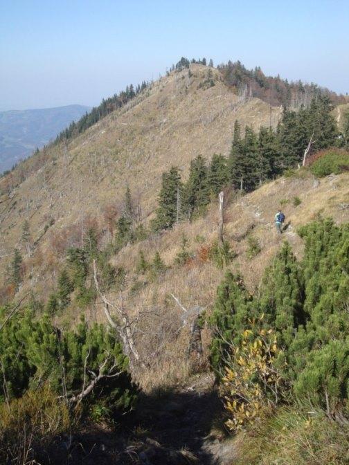 Foto: Wolfgang Dröthandl / Wander Tour / Über die Ennser Hütte auf den Almkogel / Der Weg von der bzw. zur Ennser Hütte führt über den Sonnenhang links / 16.10.2018 14:37:59