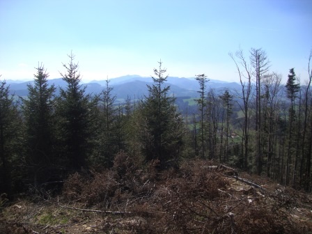 Foto: Wolfgang Dröthandl / Wandertour / Gföhlberg - zweithöchster Gipfel des Wienerwaldes / Raxblick unweit der Hütte / 03.04.2017 09:22:10