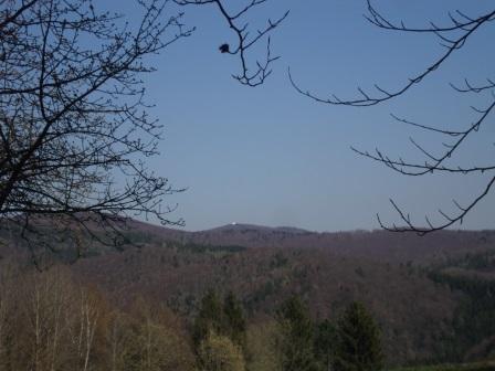 Foto: Wolfgang Dröthandl / Wandertour / Gföhlberg - zweithöchster Gipfel des Wienerwaldes / Blick zum Figl - Observatorium auf dem Mitterschöpfl / 03.04.2017 09:21:34
