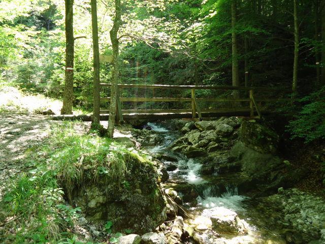 Foto: Günter Siegl / Wander Tour / Von Scharnstein auf den Windhagkogel / 07.06.2012 21:29:15