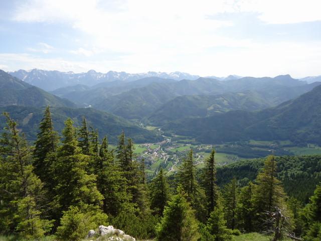 Foto: Günter Siegl / Wander Tour / Von Scharnstein auf den Windhagkogel / Grünau im Almtal / 07.06.2012 21:28:19