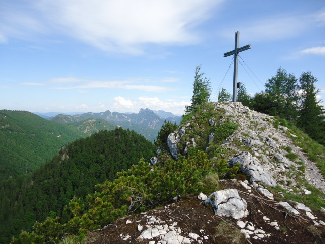Foto: Günter Siegl / Wander Tour / Von Scharnstein auf den Windhagkogel / Links vom Gipfel die Kremsmauer / 07.06.2012 21:28:10