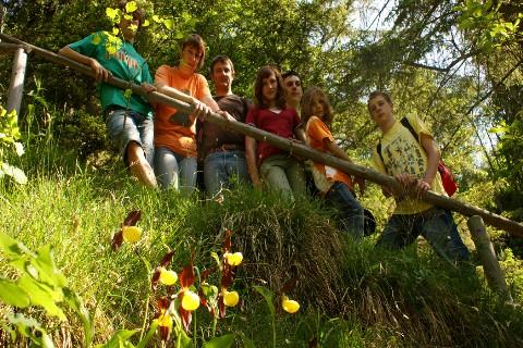 Foto: bergsepp / Wander Tour / Bergwanderung über die Thaler Kögel / Entlang am Höslbach hinauf kann man jetzt ende Mai die schönen Frauenschuh Orchideen bewundern / 30.05.2009 21:22:38