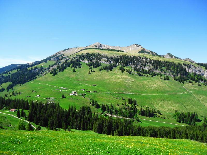 Foto: Günter Siegl / Wander Tour / Vom Ursprungpaß auf das Hintere Sonnwendjoch / Sonnwendjoch (Aufnahme vom Gegenhang oberhalb der Ackernalm) / 05.06.2017 23:02:34