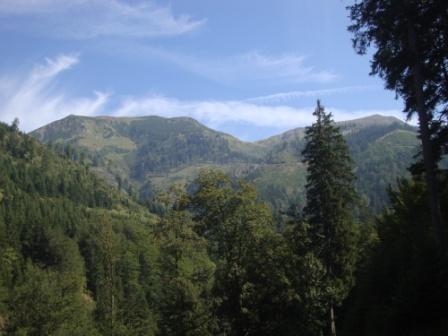 Foto: Wolfgang Dröthandl / Wander Tour / Von Wald am Schoberpaß auf den Leobner / Erster Blick auf den Kamm der Eisenerzer Alpen, rechts Leobner / 12.09.2016 15:47:12