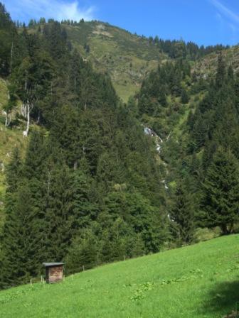 Foto: Wolfgang Dröthandl / Wander Tour / Von Wald am Schoberpaß auf den Leobner / Pucheggwiese, von hier Güterweg zur Aigelsbrunnalm / 12.09.2016 15:46:47