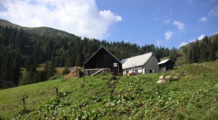 Foto: Wolfgang Dröthandl / Wander Tour / Von Wald am Schoberpaß auf den Leobner / Zurück auf der Aigelsbrunneralm / 12.09.2016 15:33:31