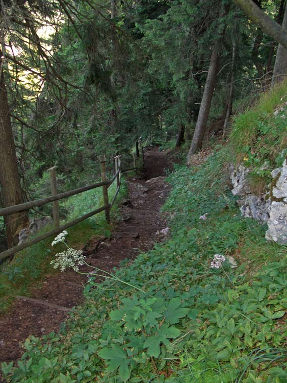 Foto: tomy37 / Wander Tour / Burgenrunde hoch über dem Talkessel von Reutte / Weg zwischen Ruine Ehrenberg und Schlosskopf / 19.08.2009 18:50:17
