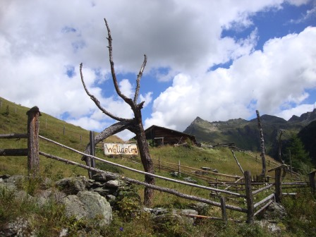 Foto: Wolfgang Dröthandl / Wander Tour / Vom Sadnighaus auf den Mohar / 29.08.2015 18:47:18