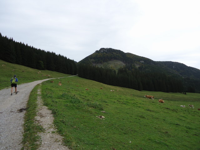 Foto: Günter Siegl / Wandertour / Vom Hengstpass auf den Wasserklotz / 27.09.2012 15:48:46