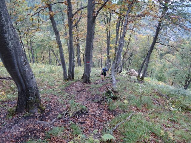 Foto: Günter Siegl / Wandertour / Vom Hengstpass auf den Wasserklotz / 27.09.2012 15:46:33