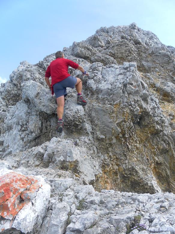 Foto: Wolfgang Lauschensky / Wander Tour / Aus dem Halltal auf die Speckkarspitze / letzte Kraxelei / 02.07.2017 13:56:08