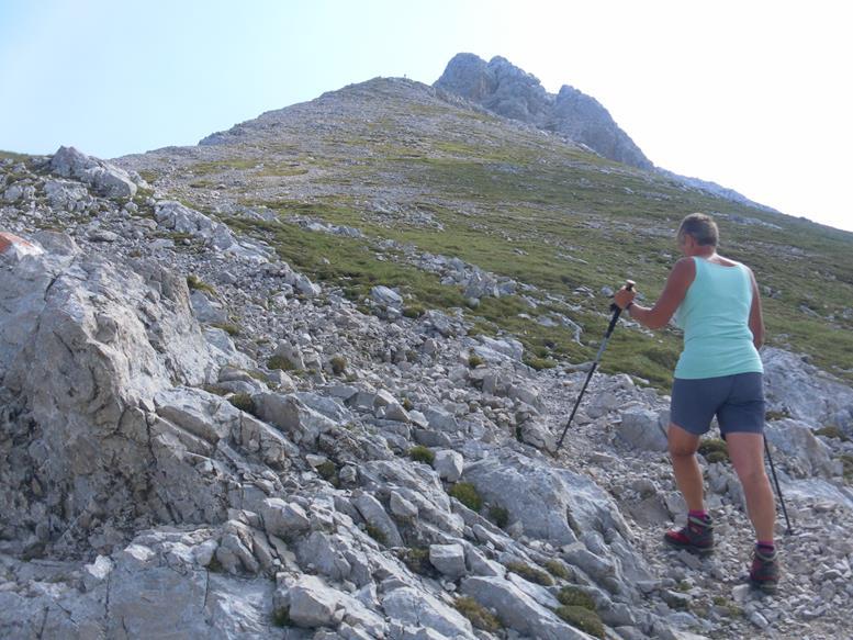 Foto: Wolfgang Lauschensky / Wander Tour / Aus dem Halltal auf die Speckkarspitze / unterer Gratrücken / 02.07.2017 13:56:44
