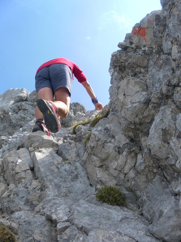 Foto: Wolfgang Lauschensky / Wander Tour / Aus dem Halltal auf die Speckkarspitze / Schlüsselstelle / 02.07.2017 13:56:30